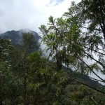 Acaime-Trip - Reiseberichte zu Kolumbien